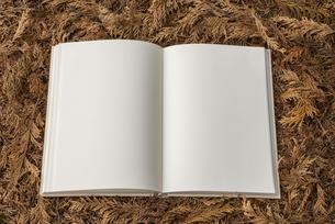 檜葉の上に置かれた白紙の本の写真素材 [FYI04761241]