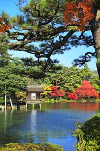 秋の金沢兼六園 霞ヶ池に内橋亭と紅葉の写真素材 [FYI04761601]