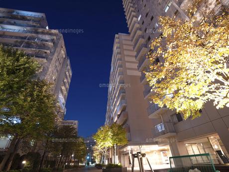 夕暮れの大型マンションの写真素材 [FYI04761630]