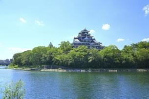岡山城と旭川の写真素材 [FYI04761953]