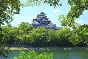 岡山城と旭川の写真素材 [FYI04761957]