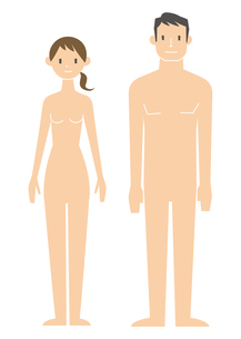 男女 裸体のイラスト素材 [FYI04762091]