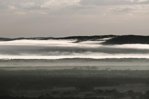 霧に覆われた朝の釧路湿原の風景の写真素材 [FYI04762250]