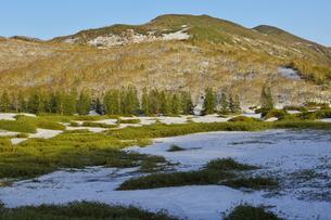 残雪と芽吹きのニセコ連峰大谷地湿原とニトヌプリの写真素材 [FYI04762380]