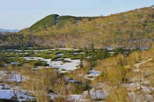 残雪と芽吹きのニセコ連峰大谷地の写真素材 [FYI04762381]