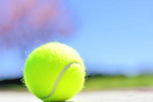テニスボールの写真素材 [FYI04762517]