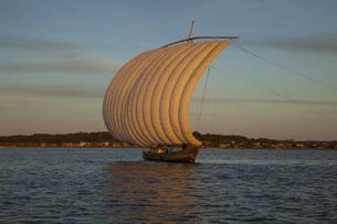 夕暮れの霞ヶ浦の帆引き船の写真素材 [FYI04762612]