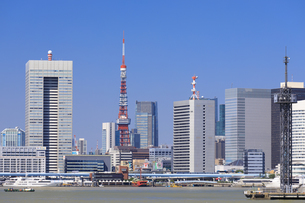 豊洲ぐるり公園より望む東京タワーの写真素材 [FYI04762665]