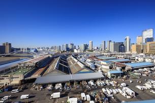 築地市場全景の写真素材 [FYI04762687]