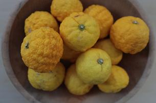 柚子の写真素材 [FYI04762911]