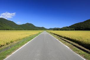 秋晴れの田園風景の写真素材 [FYI04762933]
