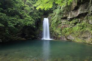 轟の滝の写真素材 [FYI04762983]