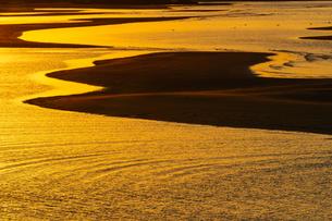 朝焼けを映す干潟の写真素材 [FYI04763065]