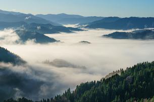 小入谷峠の雲海の写真素材 [FYI04763084]