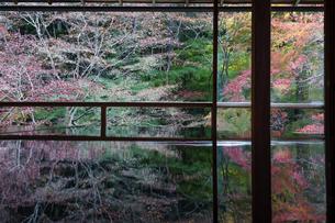 冬支度をする瑠璃光院の窓の写真素材 [FYI04763111]
