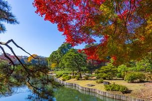 秋の六義園の写真素材 [FYI04763588]