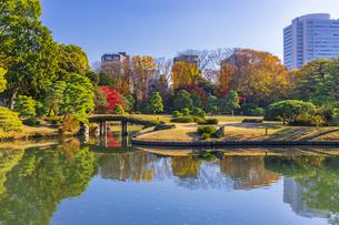 秋の六義園の写真素材 [FYI04763601]