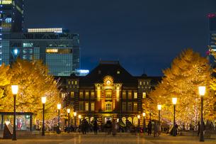 東京駅と銀杏並木のライトアップの写真素材 [FYI04763634]