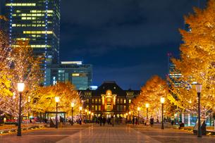 東京駅と銀杏並木のライトアップの写真素材 [FYI04763637]