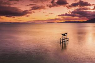 夕焼けに染まる琵琶湖 白鬚神社の写真素材 [FYI04763713]