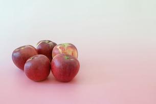 ピンク背景の紅玉りんごの写真素材 [FYI04763734]