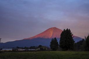 赤く夕日に染まる富士山の写真素材 [FYI04764352]