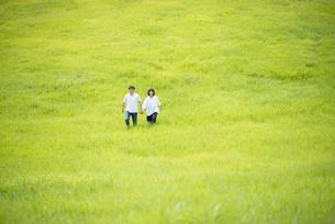 草原を歩くカップルの写真素材 [FYI04764417]