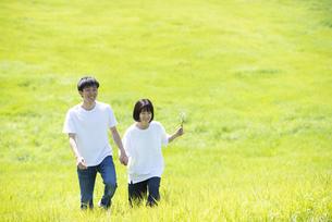 草原で手をつなぐカップルの写真素材 [FYI04764458]