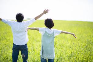 草原で深呼吸をするカップルの後ろ姿の写真素材 [FYI04764671]