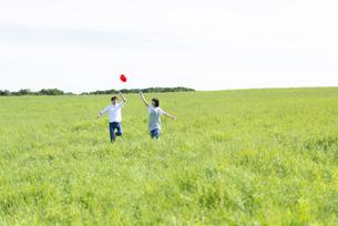 草原で風船を持つカップルの写真素材 [FYI04764700]