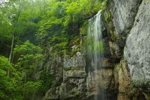 遠軽 山彦の滝の写真素材 [FYI04764706]