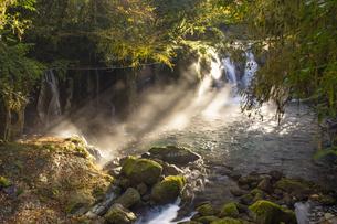 秋の菊池渓谷の写真素材 [FYI04764848]