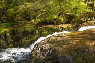 秋の菊池渓谷の写真素材 [FYI04764851]