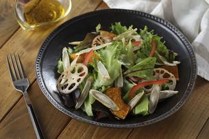 根菜チップスサラダの写真素材 [FYI04764865]