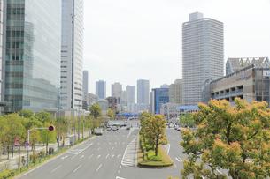豊洲の晴海通りの写真素材 [FYI04764963]