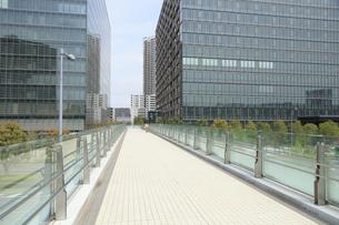 豊洲再開発地区の歩道橋の写真素材 [FYI04764980]