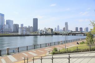 春海橋公園の写真素材 [FYI04765005]