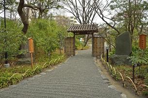 向島百花園・庭門の写真素材 [FYI04765034]