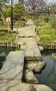 向島百花園・池に架かる石橋の写真素材 [FYI04765038]