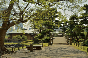 浜離宮恩賜庭園・中島の御茶屋の写真素材 [FYI04765044]