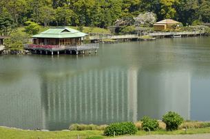 浜離宮恩賜庭園・潮入りの池と中島の御茶屋の写真素材 [FYI04765052]