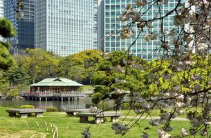 浜離宮恩賜庭園・潮入りの池と中島の御茶屋の写真素材 [FYI04765055]