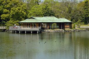浜離宮恩賜庭園・潮入りの池と中島の御茶屋の写真素材 [FYI04765056]