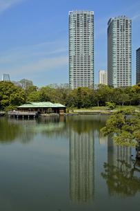 浜離宮恩賜庭園・潮入りの池と中島の御茶屋の写真素材 [FYI04765057]