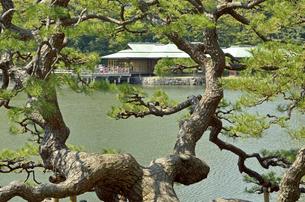 浜離宮恩賜庭園・潮入りの池と中島の御茶屋の写真素材 [FYI04765068]