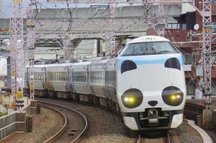 阪和線の特急パンダくろしおの写真素材 [FYI04765215]