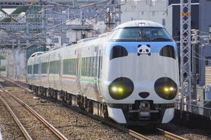大阪環状線の特急パンダくろしおの写真素材 [FYI04765261]