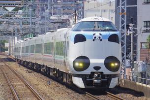 大阪環状線の特急パンダくろしおの写真素材 [FYI04765275]