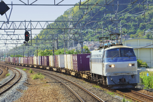 JR京都線のEF66貨物列車の写真素材 [FYI04765292]