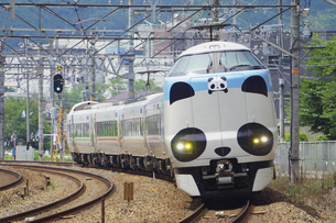 JR京都線の特急パンダくろしおの写真素材 [FYI04765323]